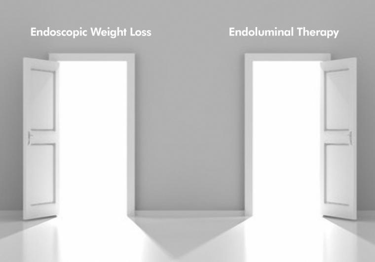 endoluminal therapy