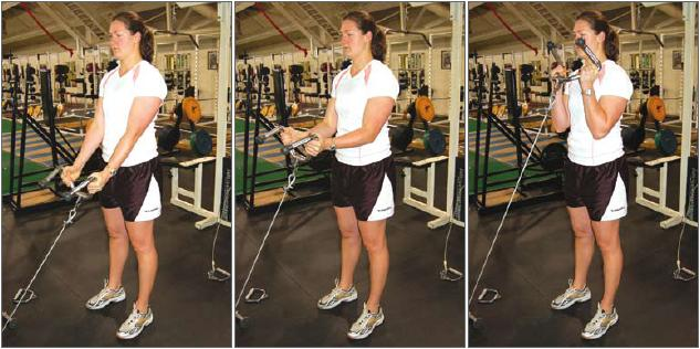 Rope Pulley Curls : Bicep curl exercise how to