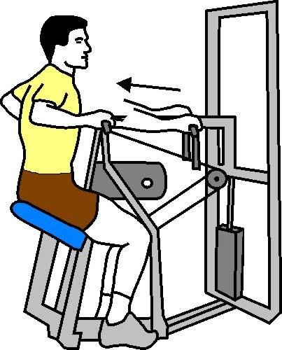 Beginner Level Weight Resistance Training Program