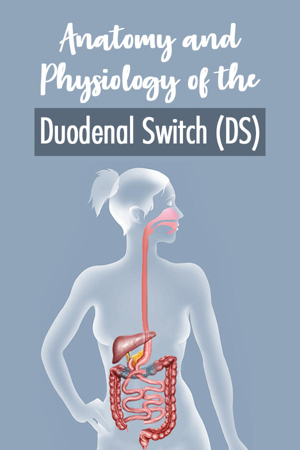 Physiology of the Duodenal Switch