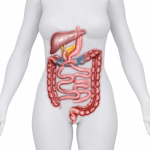 Vitamin and Mineral Absorption with the Duodenal Switch (DS)