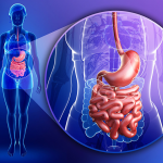 The Science of Supplementation: Digestion Prior to WLS