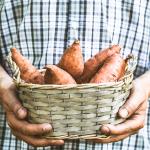 12 Immune Rich Foods
