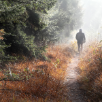 10 Great Reasons Why You Should Walk