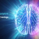 Understanding the Science of Sugar Cravings