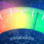 9 Habits That Kill a Metabolism and How To Increase It
